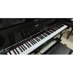 PIANO ACÚSTICO ETERNA ER...