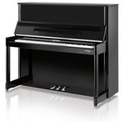 PIANO ACÚSTICO HOFFMANN...