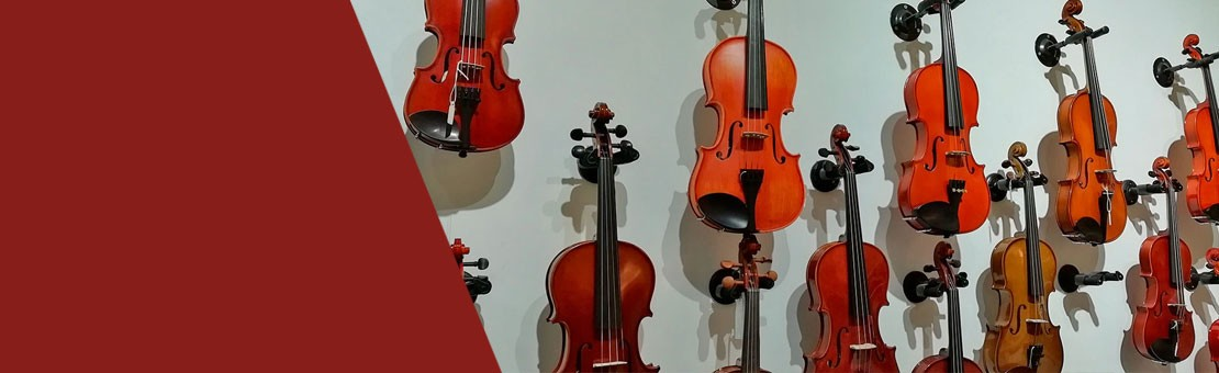 Violines de Estudio